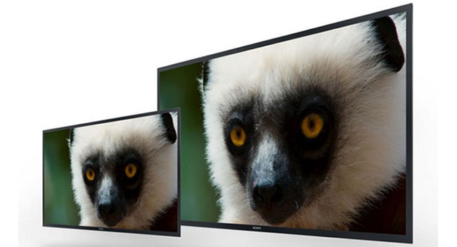 Sony представила новые OLED мониторы и прототипы 4K OLED мониторов