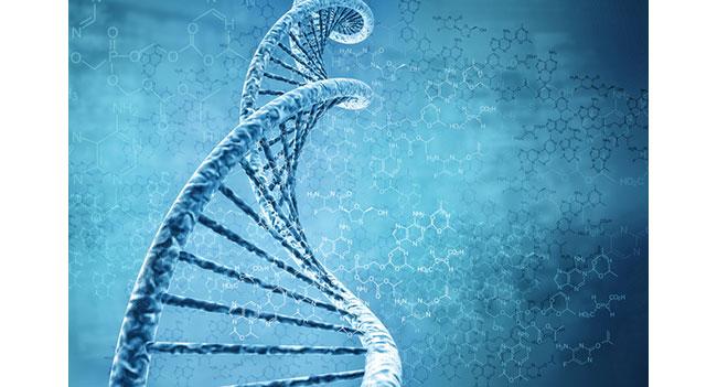 Ученые создали биологический транзистор
