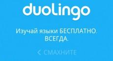 duolingo1