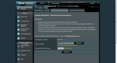 ASUS_RT-AC52U_wrt (44)