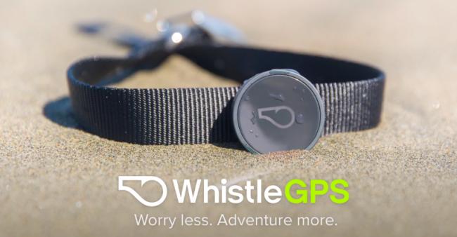 whistlegps-1