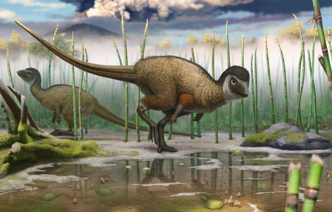 kulindadromeus-feathered-dinosaur-01_81993_990x742