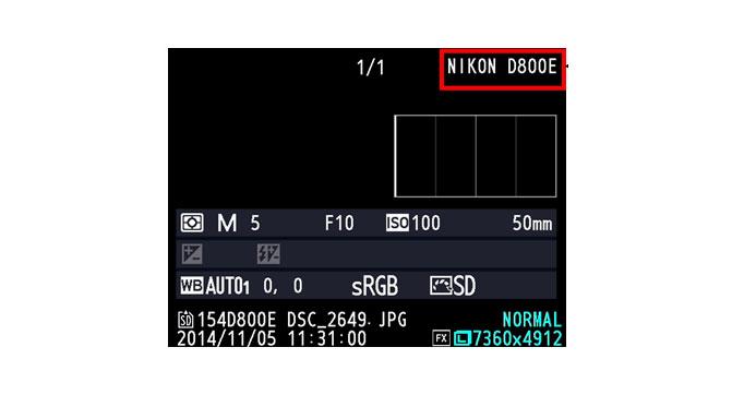Мошенники продают камеру Nikon D800 под видом более дорогой модели D800E