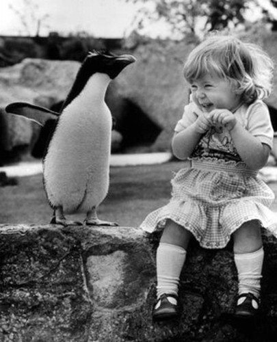 penguin-and-girl.jpg