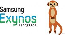 Следующее поколение SoC Samsung Exynos получит 64-разрядные ядра Mongoose, которые на 45% быстрее Cortex-A57