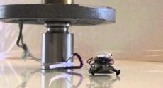 Этот робот может передвигать вес в две тысячи раз больше собственного