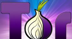 Вышел Tor 4.5