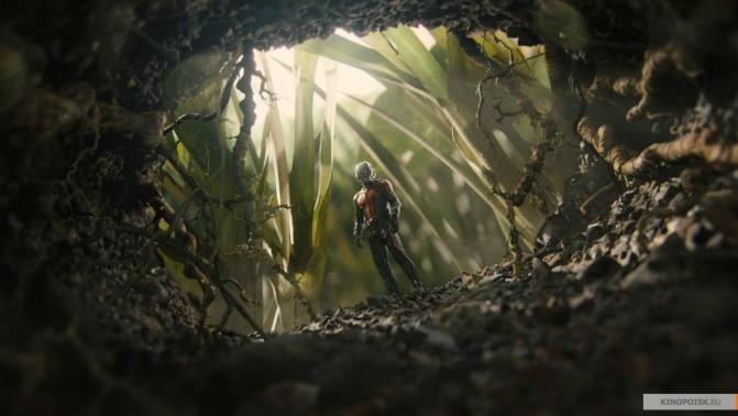 Ant Man 2015 online subtitrat - preparedwealthcom
