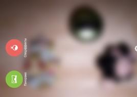 Интерфейс камеры1
