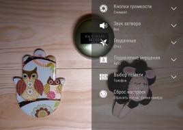 Интерфейс-камеры4