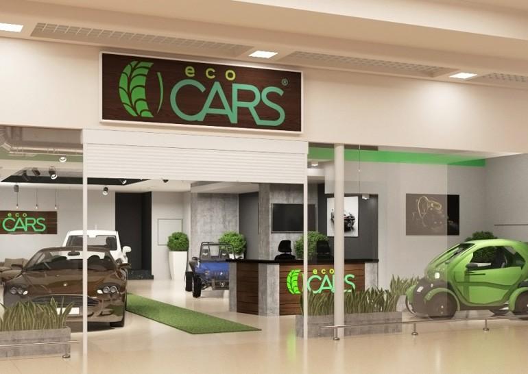 В Украине открыли первый автосалон по продаже электрокаров