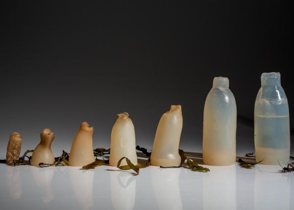 Студент изобрел разлагающиеся естественным путем бутылки из водорослей