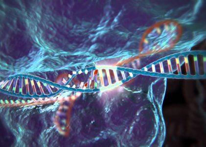 Ученые хотят генетически усилить клетки иммунитета человека для борьбы с онкозаболеваниями