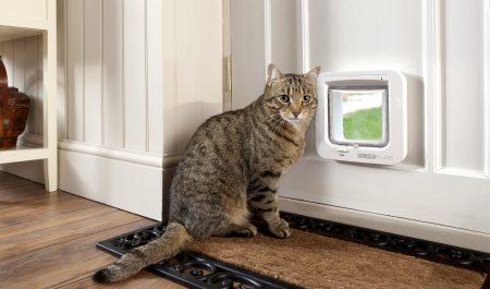 «Умная» дверца для котов SureFlap