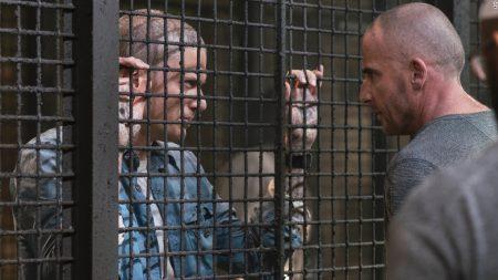 Майкл жив! Вышел новый трейлер продолжения культового драматического сериала «Побег»/Prison Break