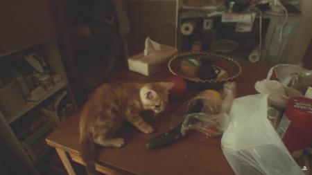Японская реклама игры Gravity Rush 2 удивила интернет