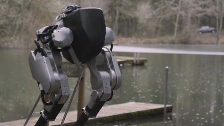 Cassie — робот, у которого есть ноги. Только ноги