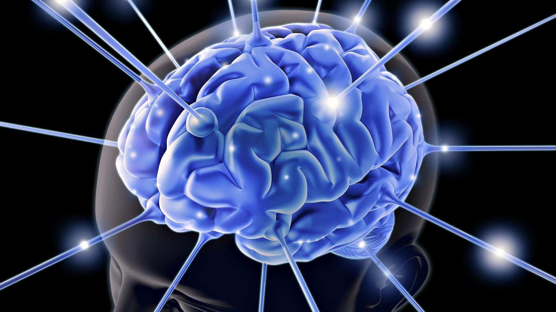 Учёные узнали, где вмозге формируется сознание