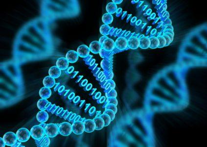 Разработан алгоритм «фонтан ДНК» с рекордной плотностью хранения – 215 петабайт данных в одном грамме ДНК