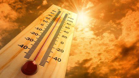 Из-за глобального потепления большие города будут все чаще страдать от аномальной жары