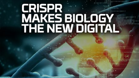 Ученым при помощи технологии CRISPR удалось записать простенькую анимацию в геном живой бактерии