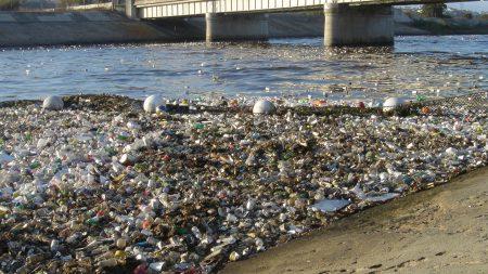 Ученые: человечеству пора задуматься о целесообразности использования пластика