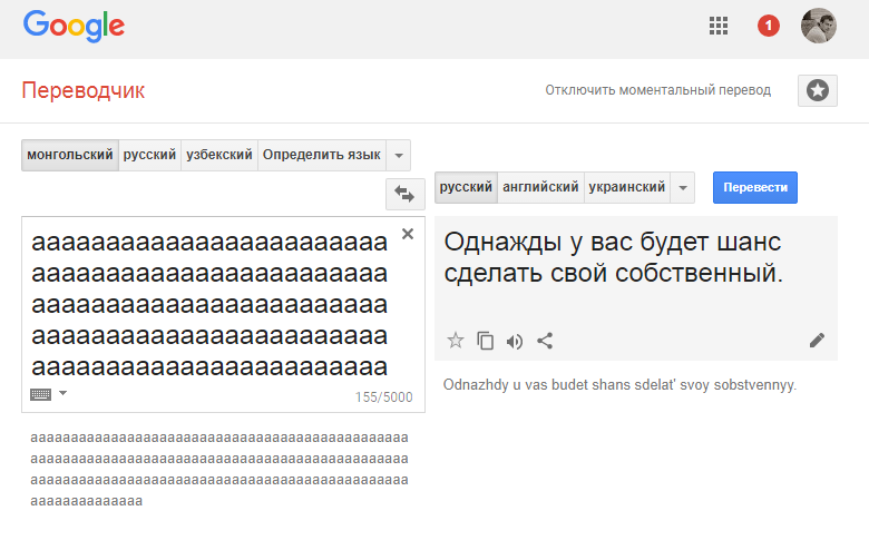 «Все кончено. Мертвая собака»: блогеры увидели странность в монгольском Google Translate