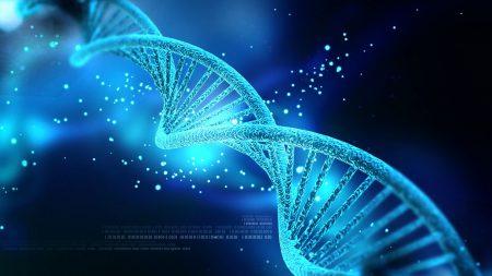 Эксперт по биоэтике Алта Чаро полагает, что опасения по поводу технологии CRISPR во многом беспочвенны