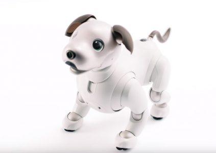 Sony представила нового робота-собаку Aibo с поддержкой LTE и облачных сервисов по цене $1,7 тыс.