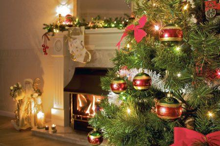"""Гослесагентство Украины разработало мобильное приложение """"Ялинка"""", которое позволяет проверить легальность новогодней елки"""