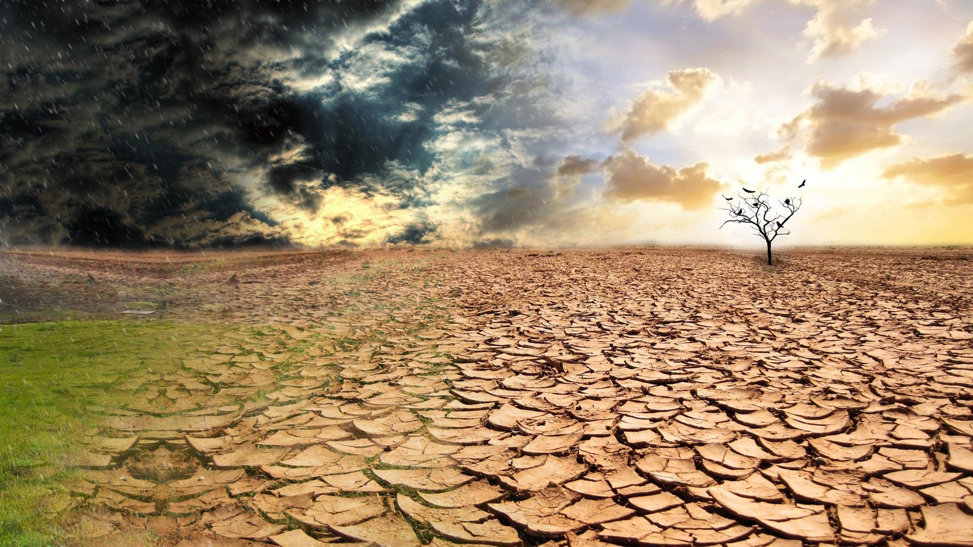 Следующие 5 лет будут рекордно жаркими, предупреждают учёные