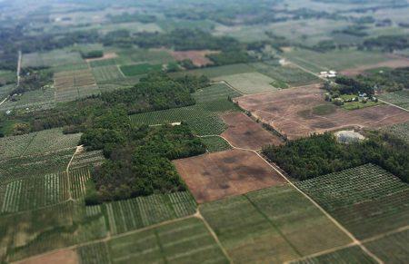 До конца лета в Украине создадут цифровую базу оценки сельхозземель