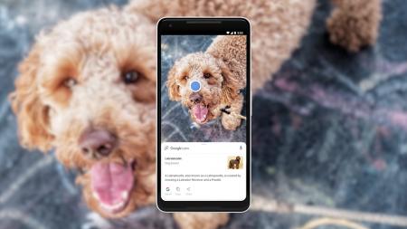 Google Lens стал частью приложения камеры смартфонов и обзавелся новыми функциями