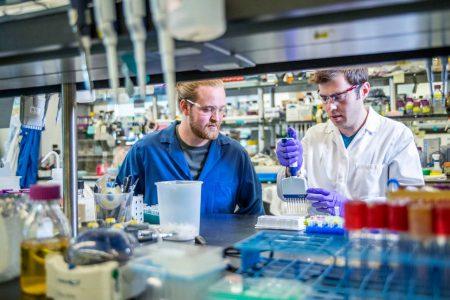 Новый способ синтеза ДНК позволит создавать гены за считанные часы