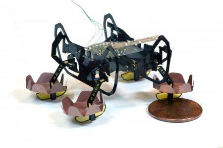 Робот-таракан HAMR, созданный гарвардскими учеными, научился плавать и ходить под водой