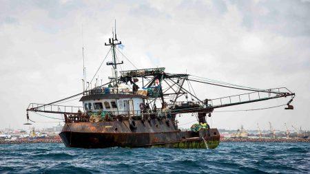 Дроны помогут бороться c браконьерами у берегов Сейшельских Островов - ITC.ua