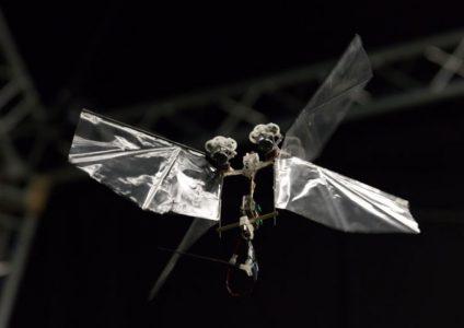 Исследователи создали крохотного робота DelFly, способного летать подобно насекомым
