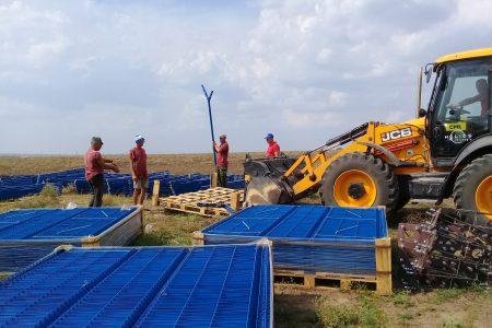Канадская компания «TIU Canada» начала строительство солнечной электростанции на 13,5 МВт в Николаевской области