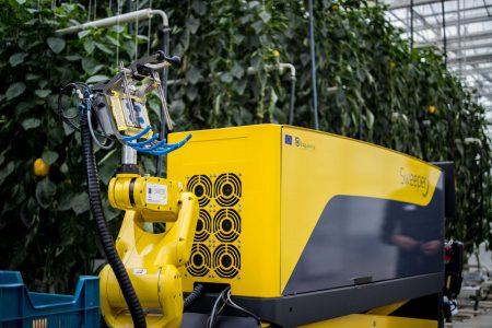 Израильские ученые представили робота Sweeper, предназначенного для сбора урожая сладкого перца