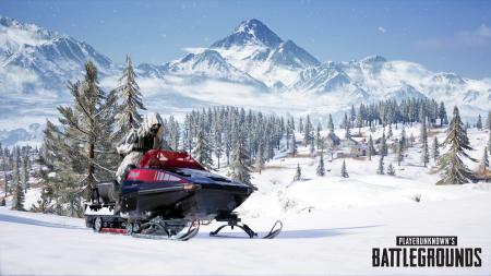 В PlayerUnknown's Battlegrounds появилась четвертая по счету «зимняя» карта Vikendi [трейлер]