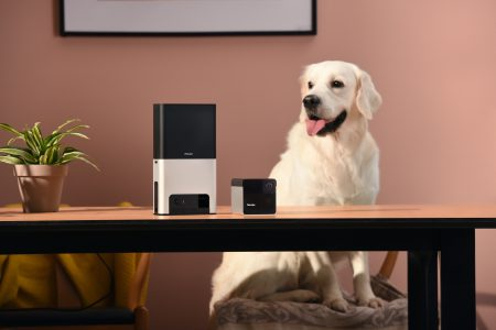 Умные камеры для животных Petcube Bites и Play получили улучшенные камеры, поддержку видео звонков и ассистента Alexa