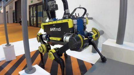 Чотириногий робот ANYmal навчився вставати з колін
