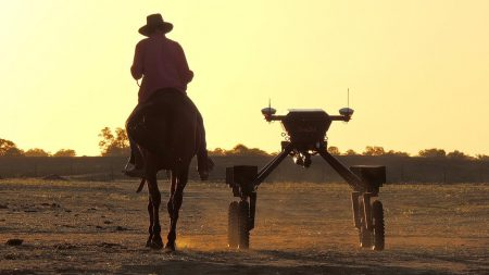 Австралийские инженеры представили робота, способного самостоятельно находить сорняки. Впоследствии его научат опрыскивать их гербицидами