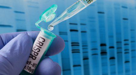 Учёные с помощью CRISPR сделали стволовые клетки невидимыми для иммунной системы