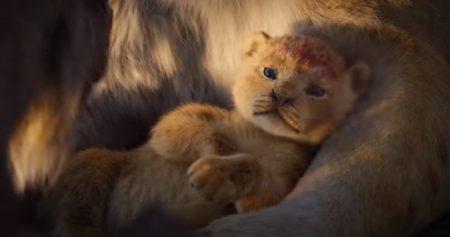 На «Оскаре» показали сцену с рождением Симбы из римейка «Короля Льва». Новое видео очень понравилось собакам