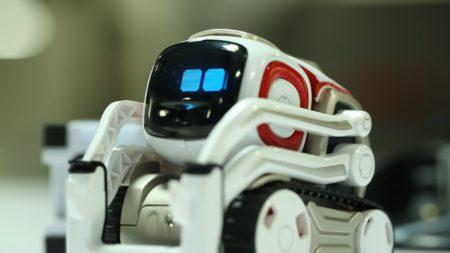 Разработчик робоигрушек Anki прекращает существование