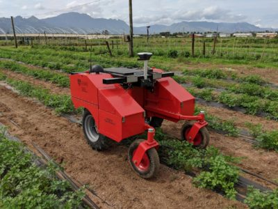 Австралийские инженеры тестируют сельскохозяйственных роботов Digital Farmhand