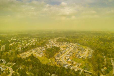 Глобальное потепление превратило американский штат Северная Каролина в «ад для аллергиков»