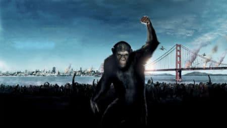 Как в «Планете обезьян»: китайские ученые создали ГМ-макак с человеческим геном развития мозга