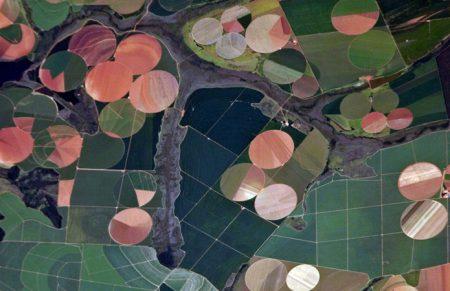 Earth Observing System предложила украинским аграриям передовую ИИ-платформу для эффективного мониторинга земельных угодий